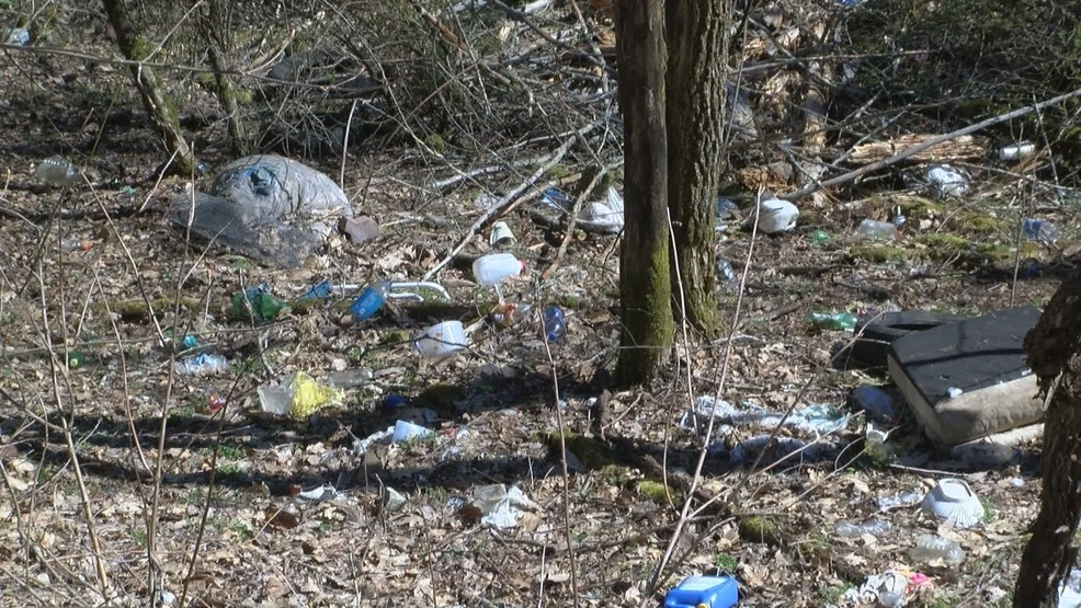 Cleanup planned for animal dump site in Carter County